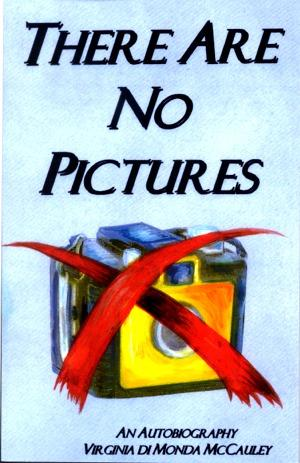 There Are No Pictures